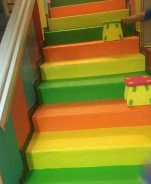 بورس انواع فوم پله